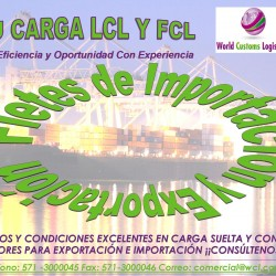 CARGA LCL Y FCL 1